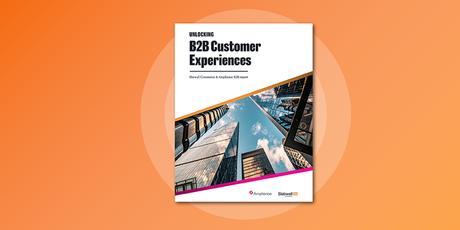 Whitepaper: Unlocking B2B Customer Experiences